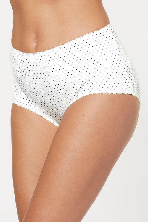 5 Pack Butterfly Spot Print Brief