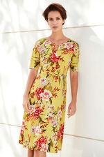 1/2 Sleeve Fit and Flare Dress