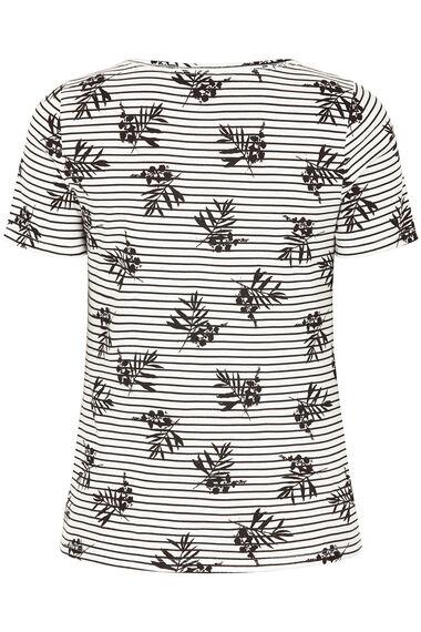 Square Neck Linear Print T-Shirt