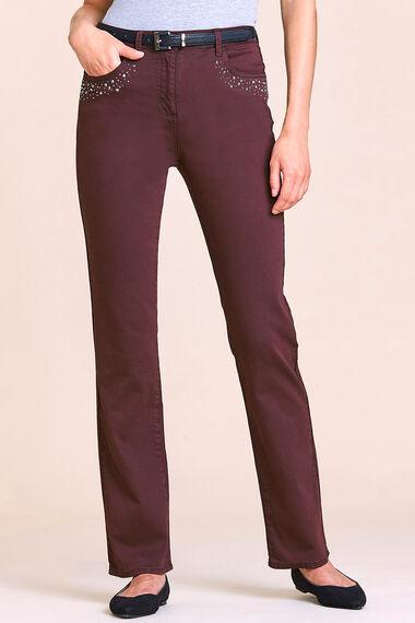 The SARA Sparkle Jean