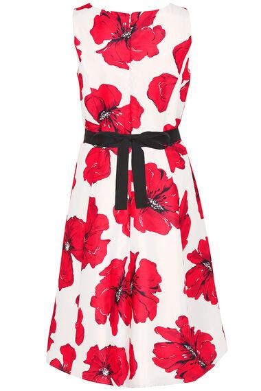 Signature Poppy Print Dress