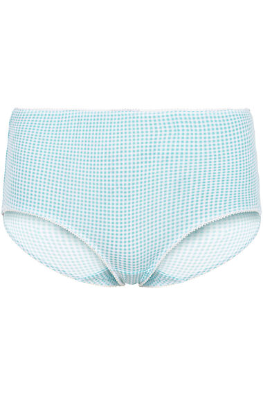 5 Pack Feather Check Briefs