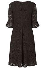 Flute Sleeve Lace Dress