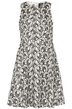 Izabel Fit and Flare Dress