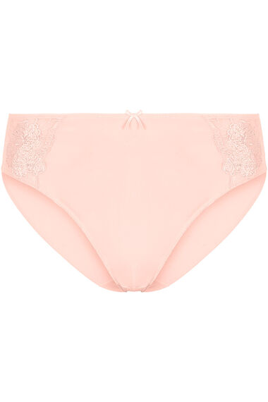 Embroidered Panel High Leg Brief