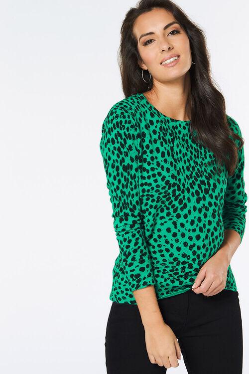 Supersoft Cheetah Print Jumper