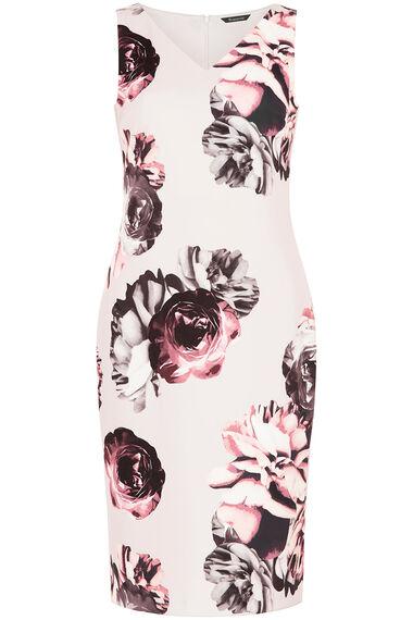 Floral Stretch Shift Dress