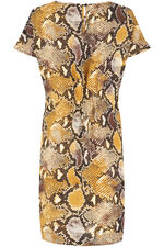 Snake Print Shift Dress