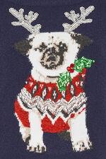 Festive Pug Christmas Jumper