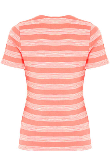 Notch Neck Printed Stripe T-Shirt