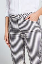 Nine To Six Stripe Print Straight Leg Cropped Jeans