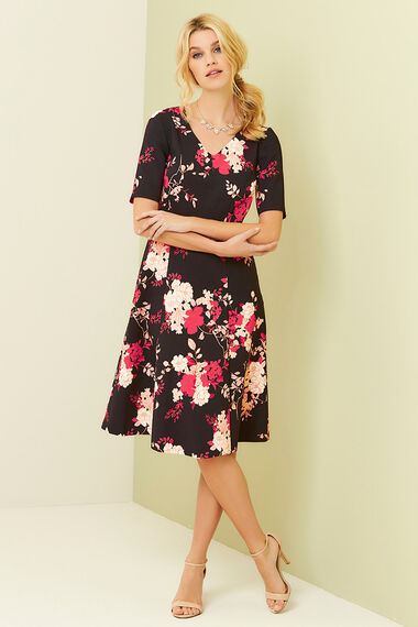 Printed Fit and Flare Dress