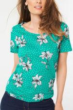 Scoop Neck Print T-Shirt