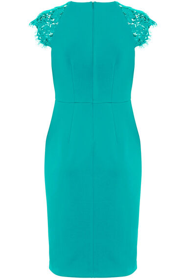 Lace Sleeve Shift Dress