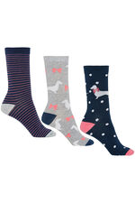 Dachshund Bow 3 Pack Sock
