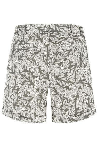 Palm Brushed Cotton Short