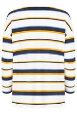 Multi Stripe Print Sweat