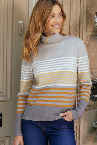 Stripe Roll Neck Jumper