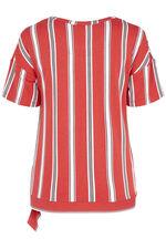 Short Sleeve Stripe Print Tie Buckle Detail Top