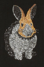 Sequin Rabbit Jumper
