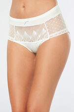 Embroidered High Leg Brief
