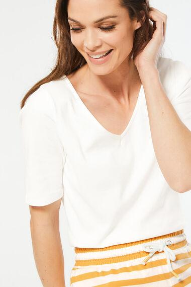 Plain Half Sleeve T-Shirt