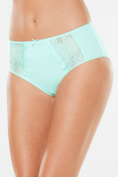 Embroidered Ditsy Floral Brief